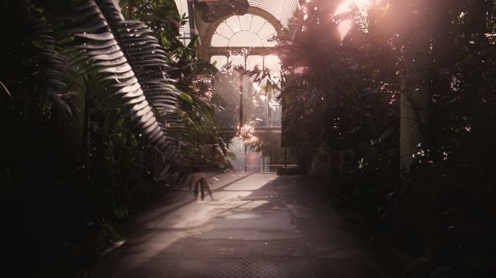 Still 2 - Palm house
